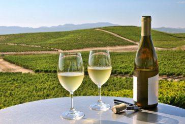 Melhores Vinhos Californianos