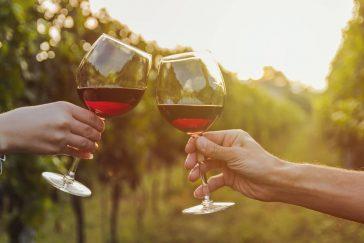 Como Segurar a Taça de Vinho