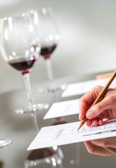 Cursos de Vinho